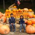 清里・巨大かぼちゃ